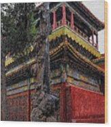 Sacred Millennium Tree Trunk Wood Print