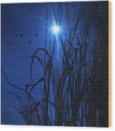 Sacred Moon... Wood Print