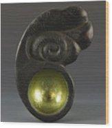 Sacred Spoon Of The Pemaquid Rock People Wood Print