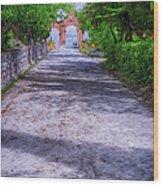 Sacromonte Abbey Entrance Wood Print