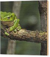 Sad Green Wood Print