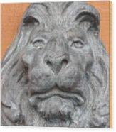 Sad Lion Wood Print