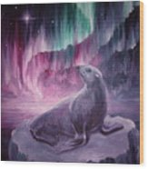 Sad Lonely Seal Wood Print