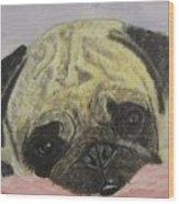 Snugly  Pug Wood Print