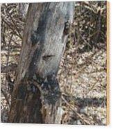 Sad Tree Wood Print