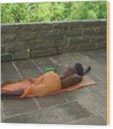 Sadhu Sleeping On Arunachala India Wood Print