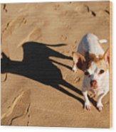 Sadie And Her Shadow Wood Print