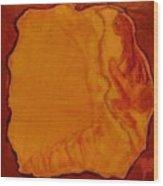 Safe Prison Wood Print