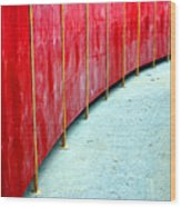 Safety Alley Wood Print