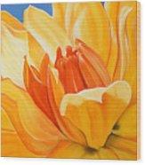 Saffron Splendour Wood Print