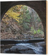 Sagamore Creek Tunnel Entry Wood Print