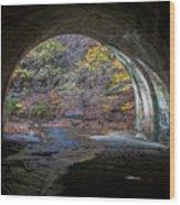 Sagamore Creek Tunnel Exit Interior Wood Print