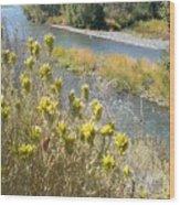 Sage Along The River Wood Print