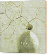 Sage  Wood Print by Linde Townsend