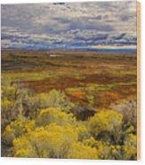 Sagebrush Country Wood Print