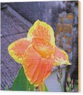 Saging Saging Tropical Flower Philippines Wood Print