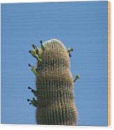 Saguaro 1 Wood Print