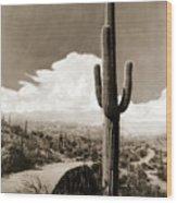Saguaro Cactus 3 Wood Print