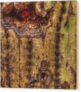 Saguaro Detail No. 18 Wood Print