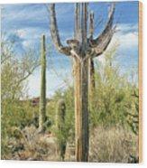 Saguaro Grande 35 Wood Print