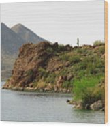Saguaro Lake Shore Wood Print