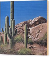Saguaro National Monument Wood Print