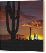 Saguaro Sunset Silhouette #2 Wood Print