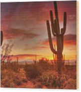 Saguaro Sunset Wood Print