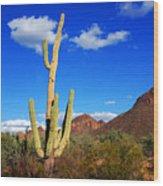 Saguaro Tree Wood Print