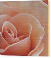 Sahara Light Tan Cream Rose Wood Print