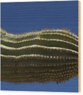 Sahuaro Arm-signed-#2414 Wood Print