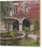Saignon Fountain Provence  Wood Print