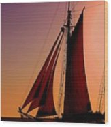 Sail At Sunset Wood Print