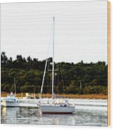 Sail Boat At Anchor  Wood Print