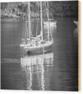Sail Boat Yaht Parked At Harbor Bay Wood Print