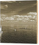 Sail Boats 1 Wood Print