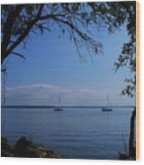Sail Boats On The Bay Wood Print