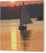 Sailboat And Sunset, South River Wood Print