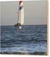 Sailboat Coming Ashore 1 Wood Print