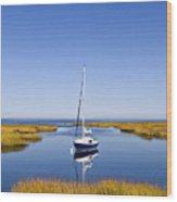 Sailboat In Salt Marsh Wood Print