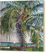 Sailboat in the Keys Wood Print