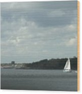 Sailboat Rounds South Beach Wood Print