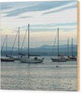 Sailboats Docked Wood Print