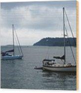 Sailboats In Bar Harbor Wood Print