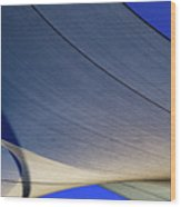 Sailcloth Abstract Times Two Wood Print