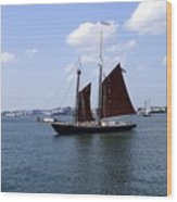Sailing Boston Wood Print