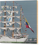 Sailing By The Battery Wood Print