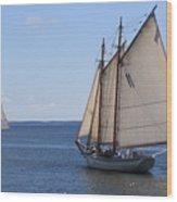 Sailing Downeast Wood Print