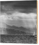 Sailing In Black And White Wood Print