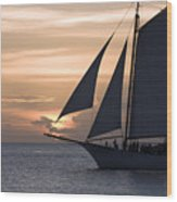 Sailing In Key West At Sunset Wood Print
